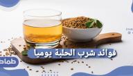 فوائد شرب الحلبة يوميا وماهى فوائد الحلبة الخضراء في التخسيس