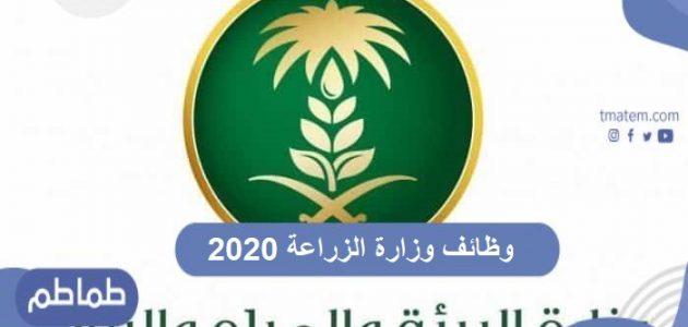 وظائف وزارة الزراعة 2020 .. تعرف موعد وأهم شروط التقديم