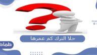 حلا الترك كم عمرها